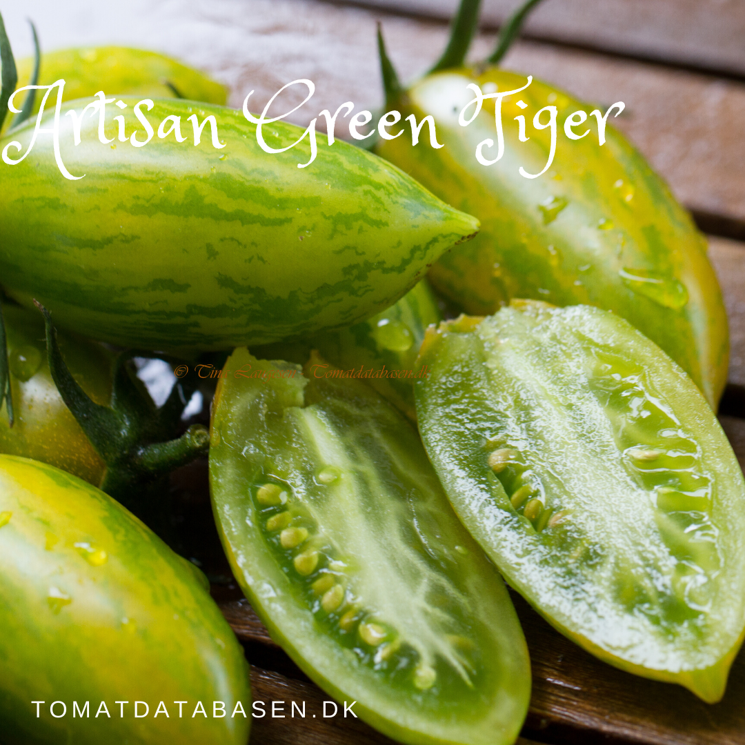Green Tiger (from Artisan)
