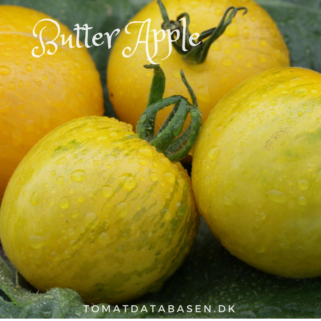 Butter Apple