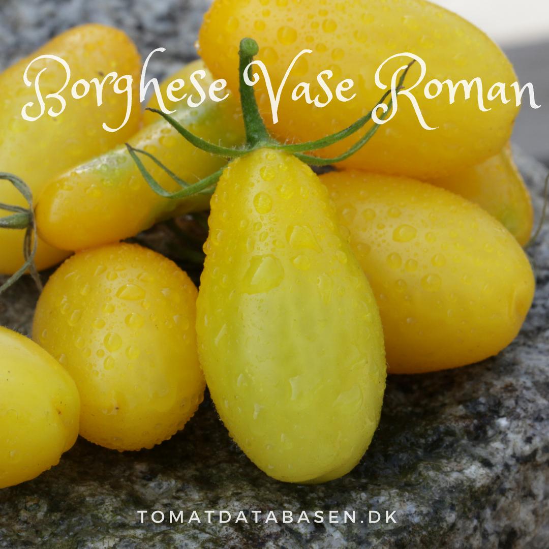 Borghese Vase Roman